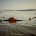Mattino al mare